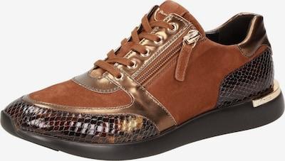 SIOUX Sneaker ' Malosika-701 ' in braun / gold / schwarz, Produktansicht