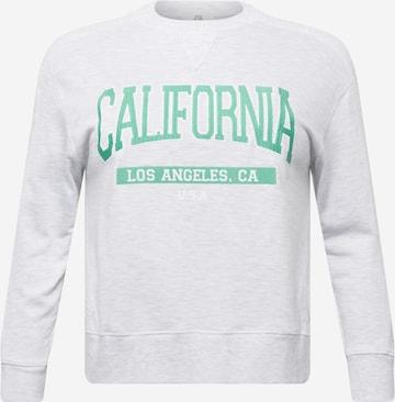River Island Petite Sweatshirt 'CALIFORNIA' in Grau