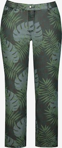 Ulla Popken Jeans in Gemengde kleuren