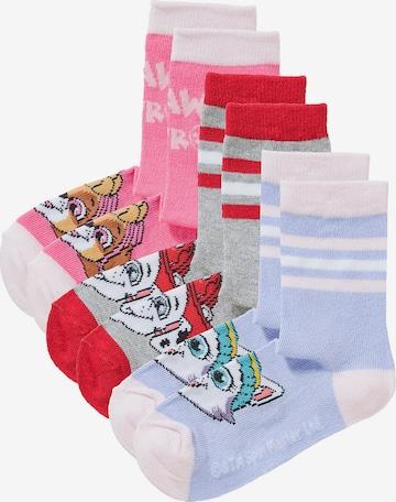 PAW Patrol Socken in Mischfarben