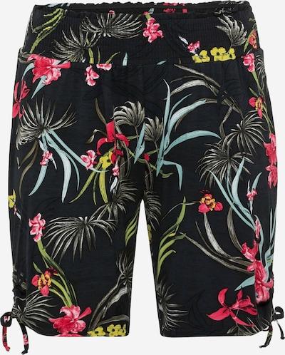 SHEEGO Pantalón en mezcla de colores / negro, Vista del producto