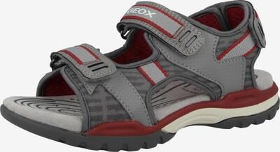 GEOX Chaussures ouvertes 'J Borealis B. D' en gris / rouge / blanc, Vue avec produit