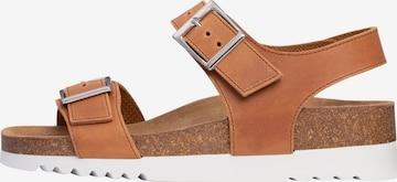 SCHOLL Sandale 'FILIPPA' in Brown