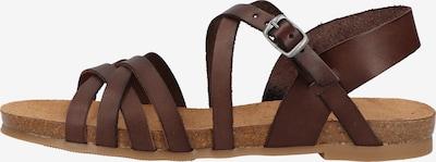 COSMOS COMFORT Sandale in dunkelbraun, Produktansicht