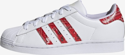 ADIDAS ORIGINALS Baskets basses 'Superstar' en rouge / blanc, Vue avec produit