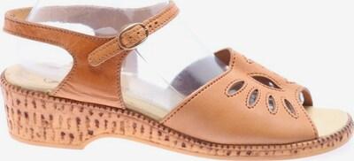 SALAMANDER Riemchen-Sandalen in 40 in hellorange, Produktansicht