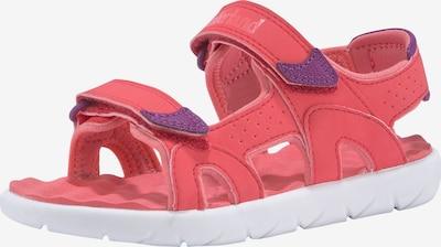 TIMBERLAND Sandale 'Perkins Row 2' in dunkellila / pink, Produktansicht