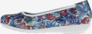 Natural Feet Ballet Flats 'Carola' in Blue