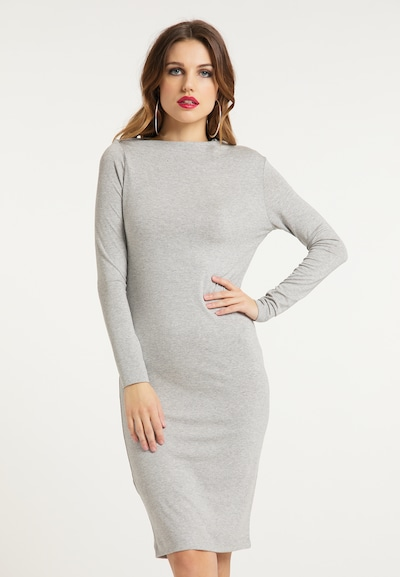 faina Jerseykleid in grau, Modelansicht