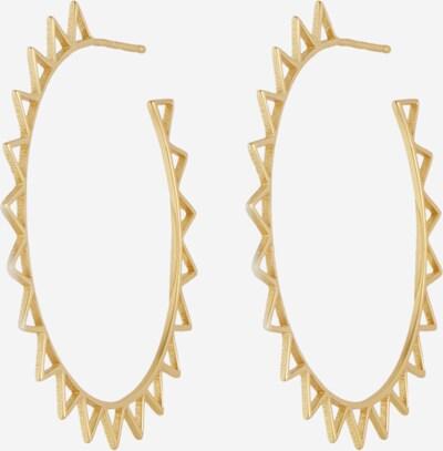 ANIA HAIE Ohrringe in gold, Produktansicht