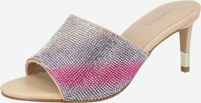 Carvela by Kurt Geiger Mule in Cream / Lavender / Pink / Silver / Transparent, Item view