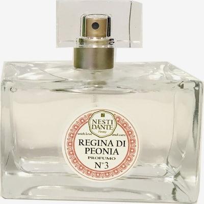 Nesti Dante Firenze Fragrance in Transparent, Item view