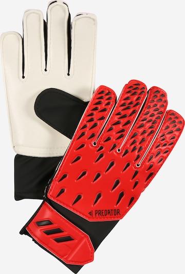 ADIDAS PERFORMANCE Gants de sport en rouge / noir / blanc, Vue avec produit
