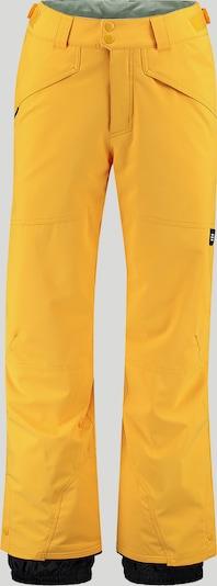 O'NEILL Pantalon outdoor 'Hammer' en or / noir, Vue avec produit
