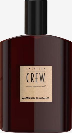 American Crew Parfüm in braun, Produktansicht