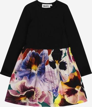 Molo Kleit 'Credence', värv segavärvid