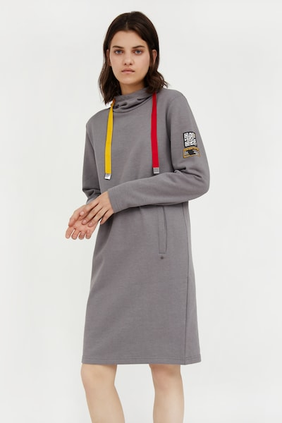 Finn Flare Sweatkleid in grau, Modelansicht