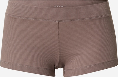ESPRIT Panty in taupe, Produktansicht