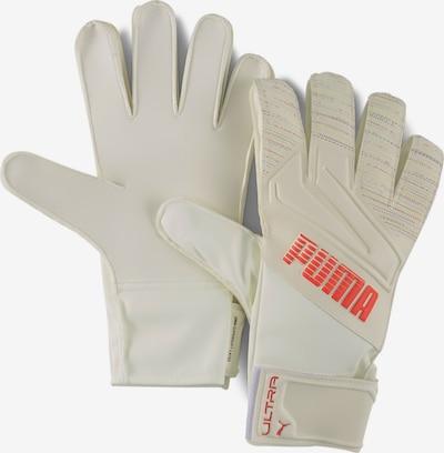 PUMA Sporthandschoenen in de kleur Sinaasappel / Wit, Productweergave