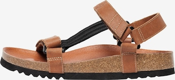 SCHOLL Sandale in Brown