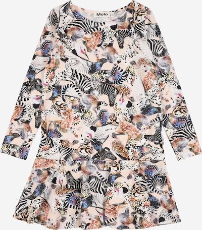 Molo Kleid 'Clare' in mischfarben, Produktansicht