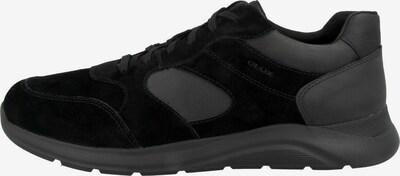 GEOX Schnürschuhe in grau / schwarz, Produktansicht