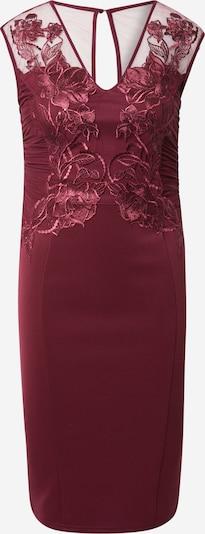 Lipsy Kleid in beere, Produktansicht