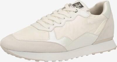 Högl Sneaker in creme / perlweiß, Produktansicht