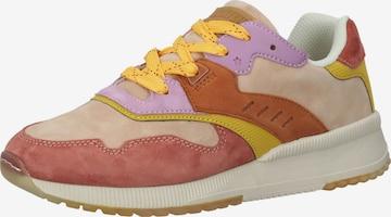 SCOTCH & SODA Sneaker in Mischfarben