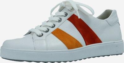 SEMLER Sneakers in Orange / Dark red / White, Item view