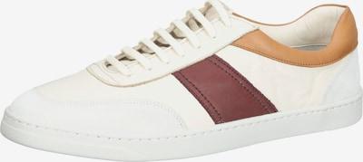 INUOVO Sneaker in creme / hellbraun / dunkelbraun / weiß, Produktansicht