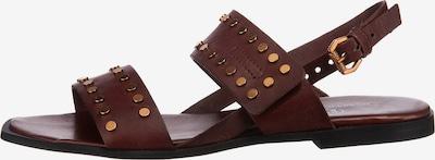JOLANA & FENENA Sandale in gold / bordeaux, Produktansicht