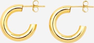 EDITED Earrings in Gold