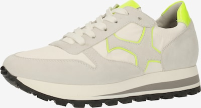 PETER KAISER Sneaker in neongelb / grau / offwhite, Produktansicht