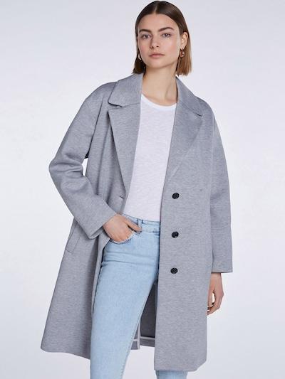 Palton de primăvară-toamnă SET pe gri, Vizualizare model
