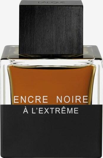 LALIQUE Eau de Parfum 'Encre Noire à l'Extrême' in transparent, Produktansicht