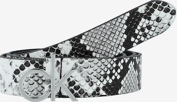 Calvin Klein - Cinturón en gris