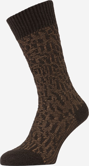 FALKE Socken in hellbraun / dunkelbraun, Produktansicht