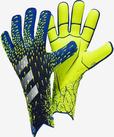 ADIDAS PERFORMANCE Torwarthandschuhe in blau / dunkelblau / gelb / weiß, Produktansicht