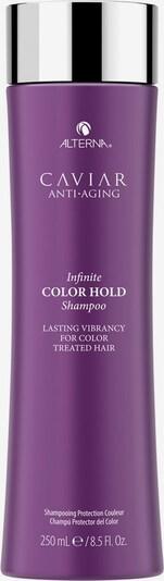 Alterna Haarshampoo in transparent, Produktansicht