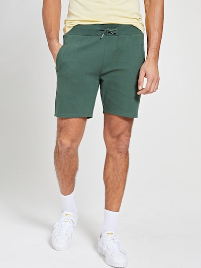 Shiwi Broek 'Mavis' in de kleur Groen, Modelweergave