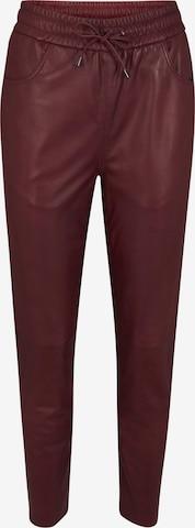 heine Pants in Red