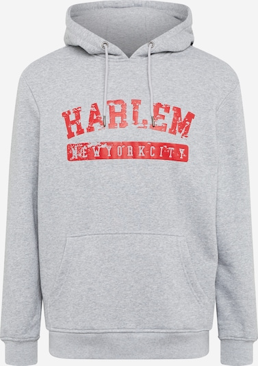SOUTHPOLE Sweater majica 'Southpole' u siva melange / tamno crvena, Pregled proizvoda