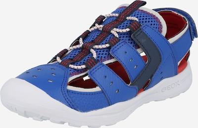 GEOX Kids Отворени обувки 'J VANIETT' в нощно синьо / кралско синьо / червено, Преглед на продукта