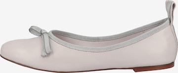 Högl Ballet Flats in Grey
