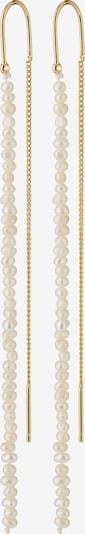 Pilgrim Σκουλαρίκια 'Native Beauty' σε χρυσό / μαργαριταρένιο, Άποψη προϊόντος