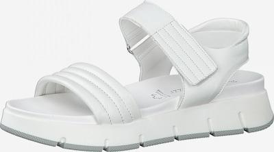 MARCO TOZZI Sandalen met riem in de kleur Wit, Productweergave
