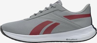 Reebok Sport Sportschuh 'Energen Plus' in grau / dunkelrot, Produktansicht