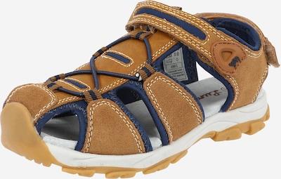 LURCHI Otvorená obuv 'BORIS' - piesková / námornícka modrá, Produkt
