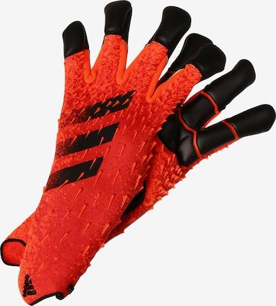 ADIDAS PERFORMANCE Torwarthandschuh 'Predator Pro Hybrid' in orangerot / schwarz, Produktansicht